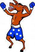 image of jackass  - Cartoon illustration of a donkey jackass boxer with boxing gloves and stars shorts as democrat mascot celebrating victory championship - JPG
