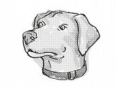 Retro Cartoon Style Drawing Of Head Of A Blue Lacy, Also Called The Lacy Dog  , A Domestic Dog Or Ca poster