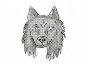 Retro Cartoon Style Drawing Of Head Of A Belgian Sheepdog, A Domestic Dog Or Canine Breed On Isolate poster