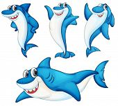 Illustraiton of comical shark series