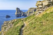 The South West Coast Path In A Beautiful Stretch Of The Cornish Coast, Between Tintagel And Bossiney poster