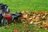 Lawn mover mulching up fall leaves. poster