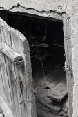 Slightly Opened Old Weathered Wooden Door And Spider Web On A Darkness Background. Scaring Backgroun poster