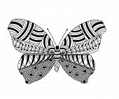 Coloring From Zentangle Patterns In The Form Of A Butterfly. Application In Printed Materials, Creat poster