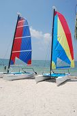Catamaran Sail Boats
