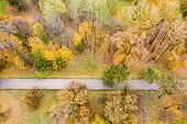 Walkway In Autumnal Park. Beautiful Autumn Trees In Yellow, Orange And Red On Autumn Day. Aerial Vie poster