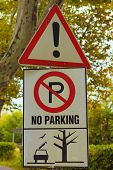 Attention Sign. No Parking Sign Because There Is The Possibility Of Falling Heavy Branches. Concept  poster