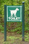 Signboard Toilet For Dogs