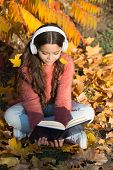 Opportunities For Audio Learning. Cute Kid In Stereo Earphones Sit On Autumn Leaves. Little Child En poster