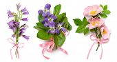 Bouquet of wild violets, dog rose and bell flowers with a pink ribbon on a white background
