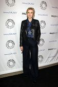 LOS ANGELES - FEB 27:  Jane Lynch arrives at the PaleyFest Icon Award 2013 at the Paley Center For M