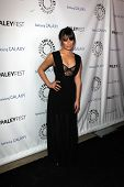 LOS ANGELES - FEB 27:  Lea Michele arrives at the PaleyFest Icon Award 2013 at the Paley Center For