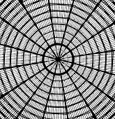 Abstract Roof Looking Like Spider Web