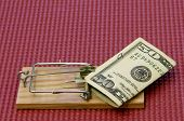 foto of mouse trap  - fifty dollar bill on a mouse trap with a mat background - JPG