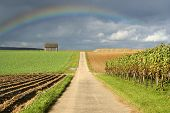 image of end rainbow  - Beautiful rainbow at the end of the path - JPG