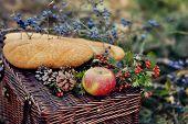 still life of autumn picnic