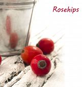 rosehips with place for the text