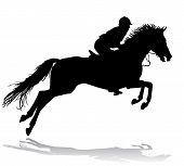Reiter auf Pferd