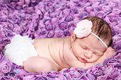 Beautiful newborn baby girl asleep - taken closeup
