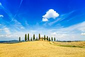stock photo of senesi  - Tuscany farmland and cypress trees and white road country landscape - JPG
