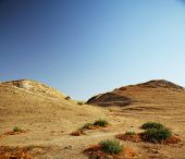 Desert with rare grass in the place of ancient city of Afrasiyab (from 500 BC). Nothern Samarkand, Uzbekistan