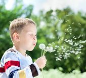 Young Boy In Park Blowing On Dandelion
