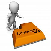 Diversity Key Means Multi-cultural Range Or Variance