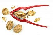 Metal nutcracker with walnuts