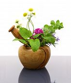 foto of pestle  - Mortar and pestle with fresh herbs - JPG