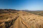 Dirt Road Rugged Wilderness