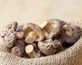 Shiitake Mushroom In Hessian Bag