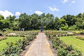 Fountain At Public Park In Bellingraths Gardens