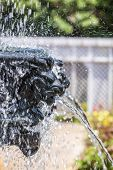 stock photo of waterspout  - detail of fountain at public park in Bellingraths gardens - JPG