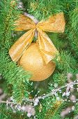 Christmas Tree Branch With Decorations Background