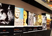 Gallery Of Books On The History Of The Roman Empire In Coliseum, Rome