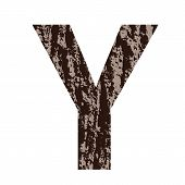 Letter Y Made From Oak Bark