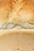 Wheat Bread.