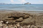 Caretta Sandy Beach