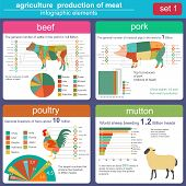 foto of husbandry  - Agriculture animal husbandry infographics Vector illustrationstry info graphics - JPG