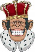 Monkey in a crown