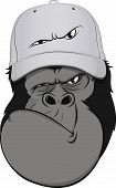 Funny monkey hat