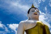 Big Buddha Bust