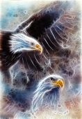 Symbol of American Freedom Two Eagles On An  Fractal Efect