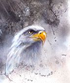 Beautiful Painting Of  Eagle eye On An Abstract Background America symbol