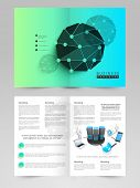 Corporate two page business brochure, flyer or template with networking ideas.