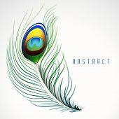 Creative beautiful peacock feather on stylish background.