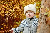 Boy In Fall Forest