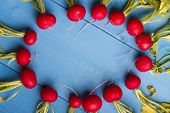 picture of radish  - Radish on Blue Wooden Background with Copy - JPG