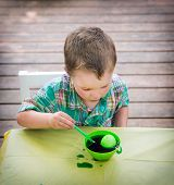 Boy Looks At His Easter Egg In The Green Dye