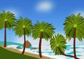 Beach Scene With Coconut Palms